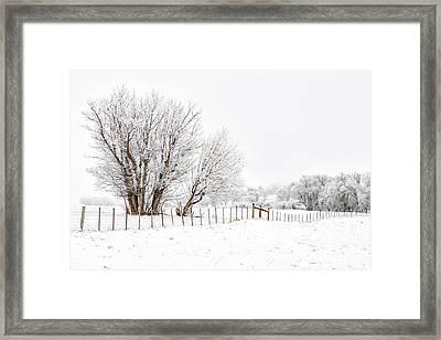 Frosty Winter Scene Framed Print