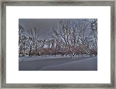 Frozen At The Creek's Edge Framed Print by Steven Geer