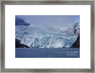 Frozen Beauty Framed Print
