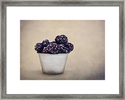 Frozen Berries Framed Print by Maggie Terlecki