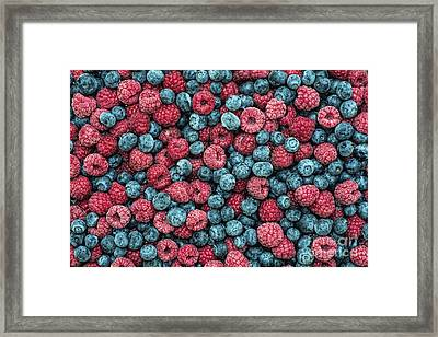 Frozen Berries Framed Print by Tim Gainey