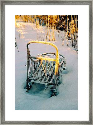 Frozen Dogsled Framed Print by Juergen Weiss