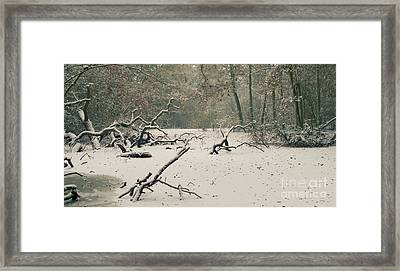 Frozen Fallen Wide Framed Print
