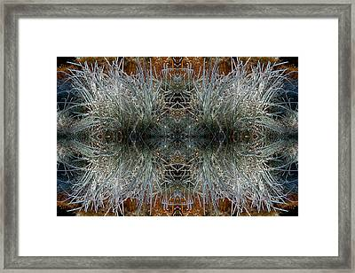 Framed Print featuring the photograph Frozen Grass Abstract by Gary Cloud