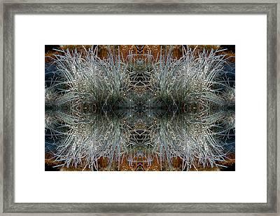 Frozen Grass Abstract Framed Print