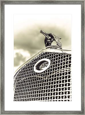 Frozen In Flight Framed Print by Caitlyn Grasso