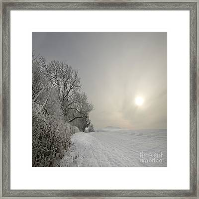Frozen Landcape Framed Print