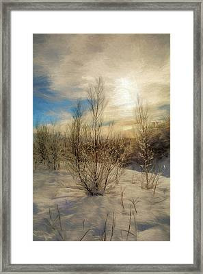 Frozen Landscape Framed Print by Maria Coulson