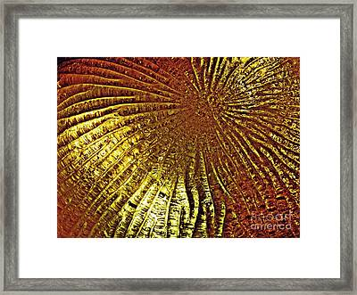 Frozen Light Framed Print