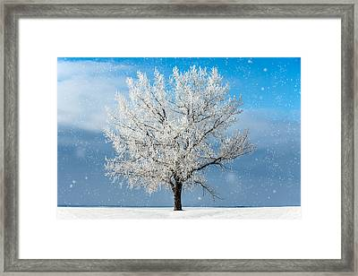 Frozen Limbs Framed Print