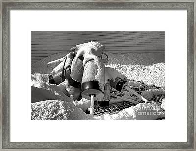Frozen Lobster Trap Buoys In Snow Framed Print by Olivier Le Queinec