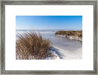 Frozen Marsh Framed Print