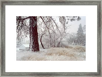 Frozen Morning In Palouse Framed Print by Jerry McCollum