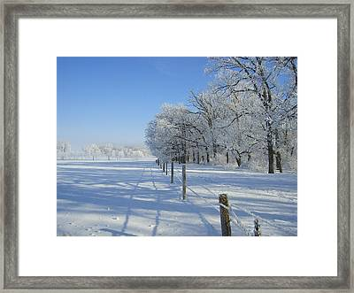 Frozen Mystery Framed Print by Jessica Yudis