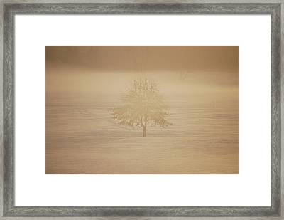 Frozen Natural Sepia Horizontal Framed Print by Peter  McIntosh