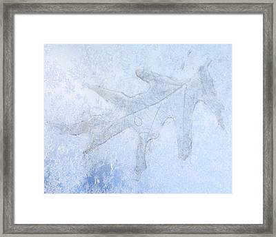 Frozen Oak Leaf Imprint Framed Print by Kathy M Krause