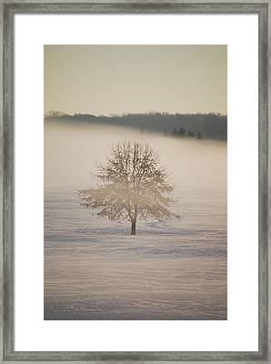 Frozen  Framed Print by Peter  McIntosh