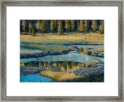 Frozen Reflections Framed Print by Billie Colson