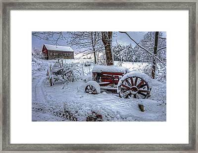 Frozen Relics Framed Print