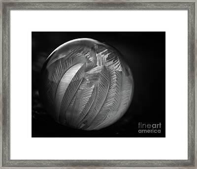 Frozen Soap Bubble - Black And White - Macro Framed Print