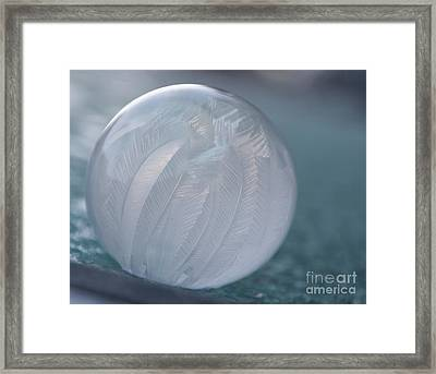 Frozen Soap Bubble -georgia Framed Print