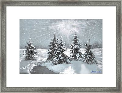 Frozen Sunshine Framed Print