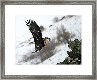 Frozen Take-off Framed Print by Mike Dawson