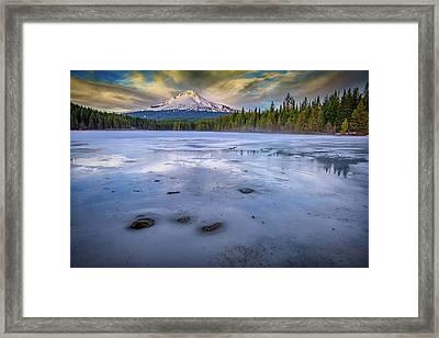 Frozen Trillium Framed Print by Rick Berk