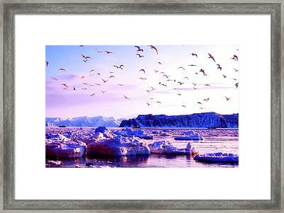 Frozen Vista - Kamchatka Framed Print by Natalia Kollegova
