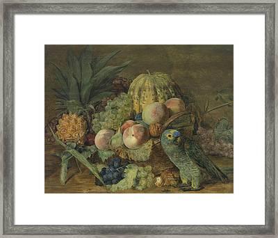 Fruchtestillleben Mit Einem Amazonenpapagei Framed Print