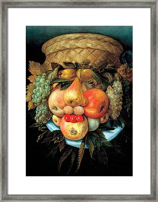 Fruit Basket Framed Print by Giuseppe Arcimboldo