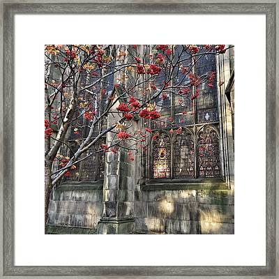 Fruit By The Church Framed Print by RKAB Works