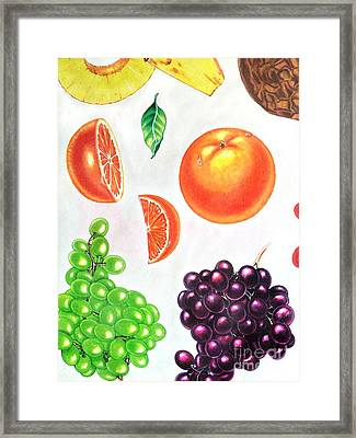 Fruit Illustrations - Markers And Pencil Framed Print by Miriam Danar