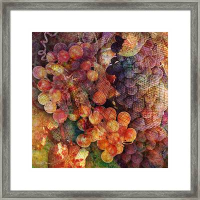 Fruit Of The Vine Framed Print by Barbara Berney