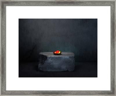 Fruit On A Pedestal Framed Print by Zin Shades