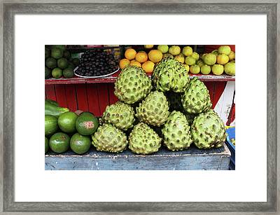 Fruit Stand With Chirimoya Framed Print by Janet Millard
