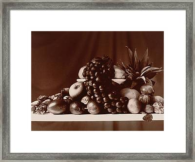 Fruit Still Life Framed Print by Elspeth Ross