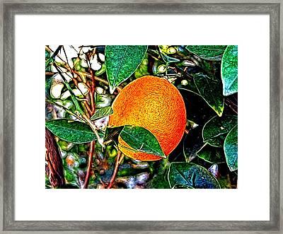 Framed Print featuring the photograph Fruit - The Orange by Glenn McCarthy Art