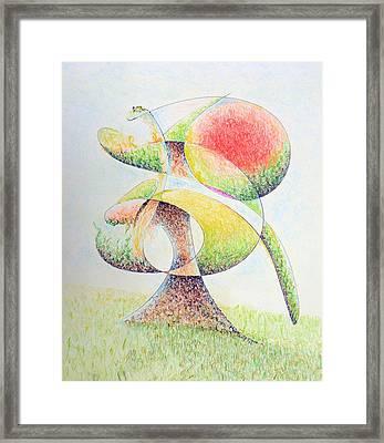 Fruit Tree Framed Print