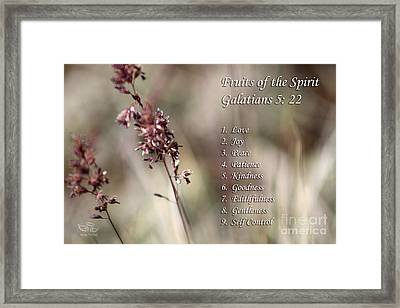 Fruits Of The Spirit Framed Print by Beauty For God