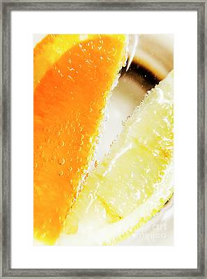 Fruity Drinks Macro Framed Print