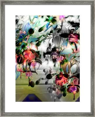 Fuchsia Abstract Framed Print by Stuart Turnbull