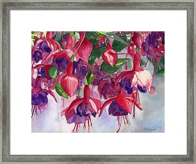Fuchsia Frenzy Framed Print by Lynne Reichhart