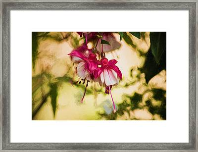 Evening Dreams - Digital Painting Framed Print by Marilyn Wilson
