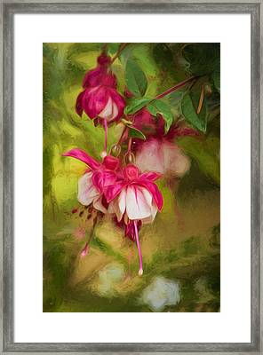 Evening Light - Digital Painting Framed Print by Marilyn Wilson