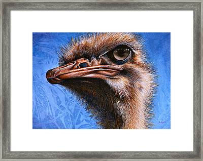 Fugley Framed Print by JoLyn Holladay