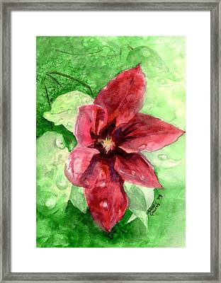 Full Bloom Framed Print by Andrew Gillette