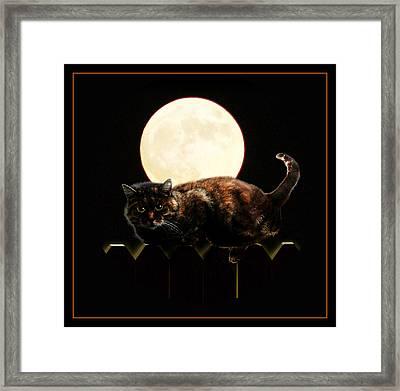 Full Moon Cat Framed Print by Gravityx9 Designs