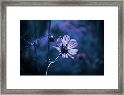 Framed Print featuring the photograph Full Moon Cosmos by Douglas MooreZart