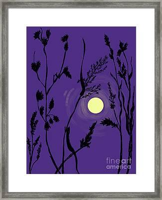 Full Moon In The Wild Grass Framed Print by Dawn Senior-Trask
